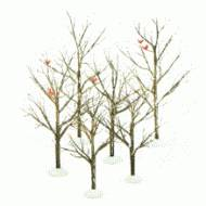 Bare Branch Trees, Set of 6